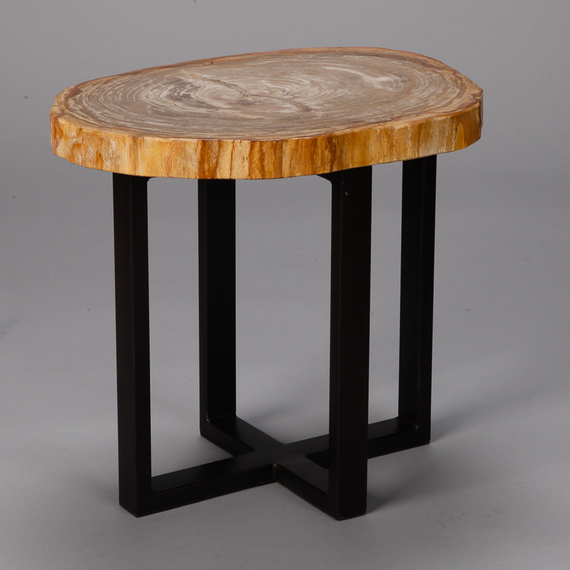 Photo Of Small Side Table With Petrified Wood Top And Metal Legs
