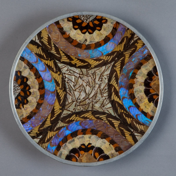 Large Brazilian Butterfly Plate With Geometric Pattern