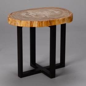 Photo of antique Small Side Table With Petrified Wood Top and Metal Legs