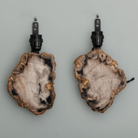 Photo of antique Pair Sconces with Petrified and Polished Wood